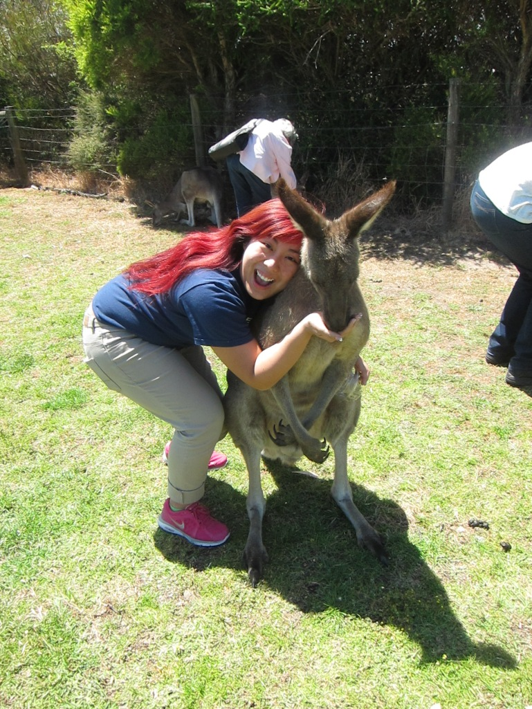 Me: Just hold still and take a picture and I'll give you the food. Kangaroo: sigh... it's hard being a celebrity.